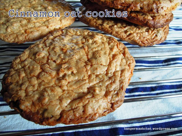 cinnamon oat cookie