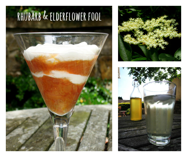 Rhubarb Fool Collage