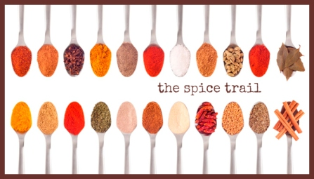 spice trail badge long