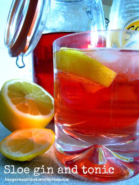 sloe gin and tonic