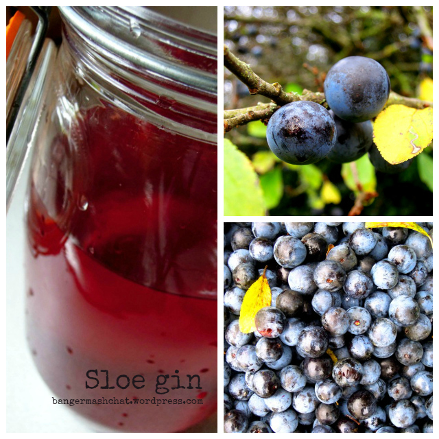 sloe gin Collage