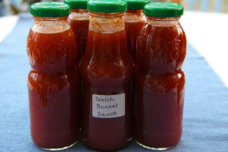 scotch_bonnet_sauce