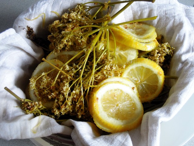 elderflower lemons