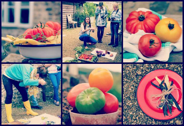 Photo Workshop Collage