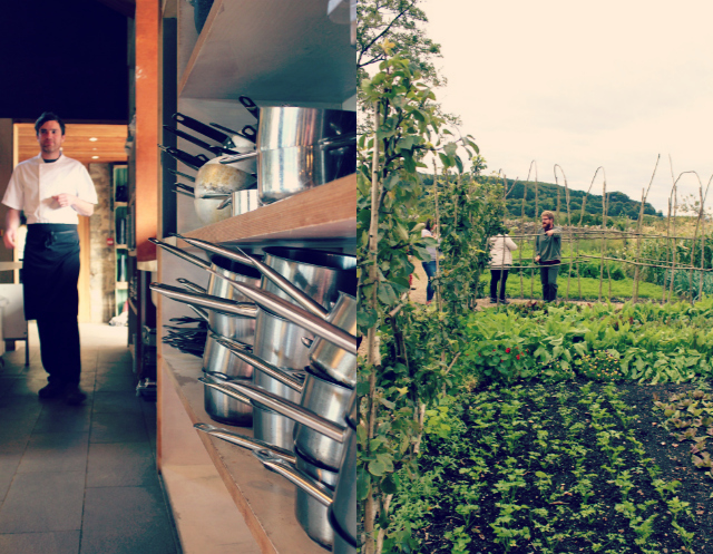 River Cottage Collage